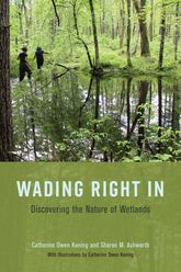 Wading Right InDiscovering the Nature of Wetlands